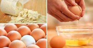 La protéine de blanc d'oeuf en poudre
