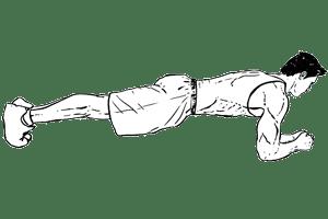 planche abdominale sur les coudes