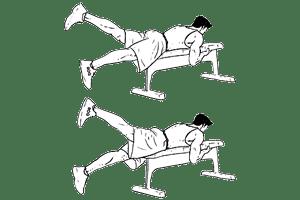 planche dorsale ciseau